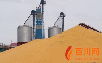 徐州:粮食烘干机械化水平每年提高10%图片
