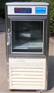低温干燥箱,低温低湿干燥箱